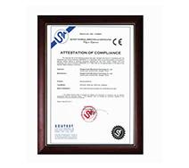 Honor/Certificate 2