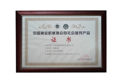 Honor/Certificate 6